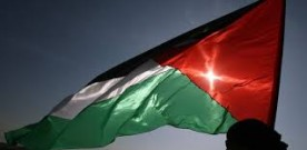 Manifestation pour Gaza à Pau