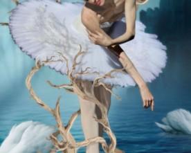 Jeu concours : Le Lac des Cygnes