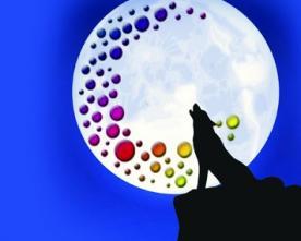 Programme de Septembre et Octobre - La Luna Negra de Bayonne